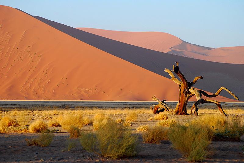 Wilderness Safaris Namibia vacancies