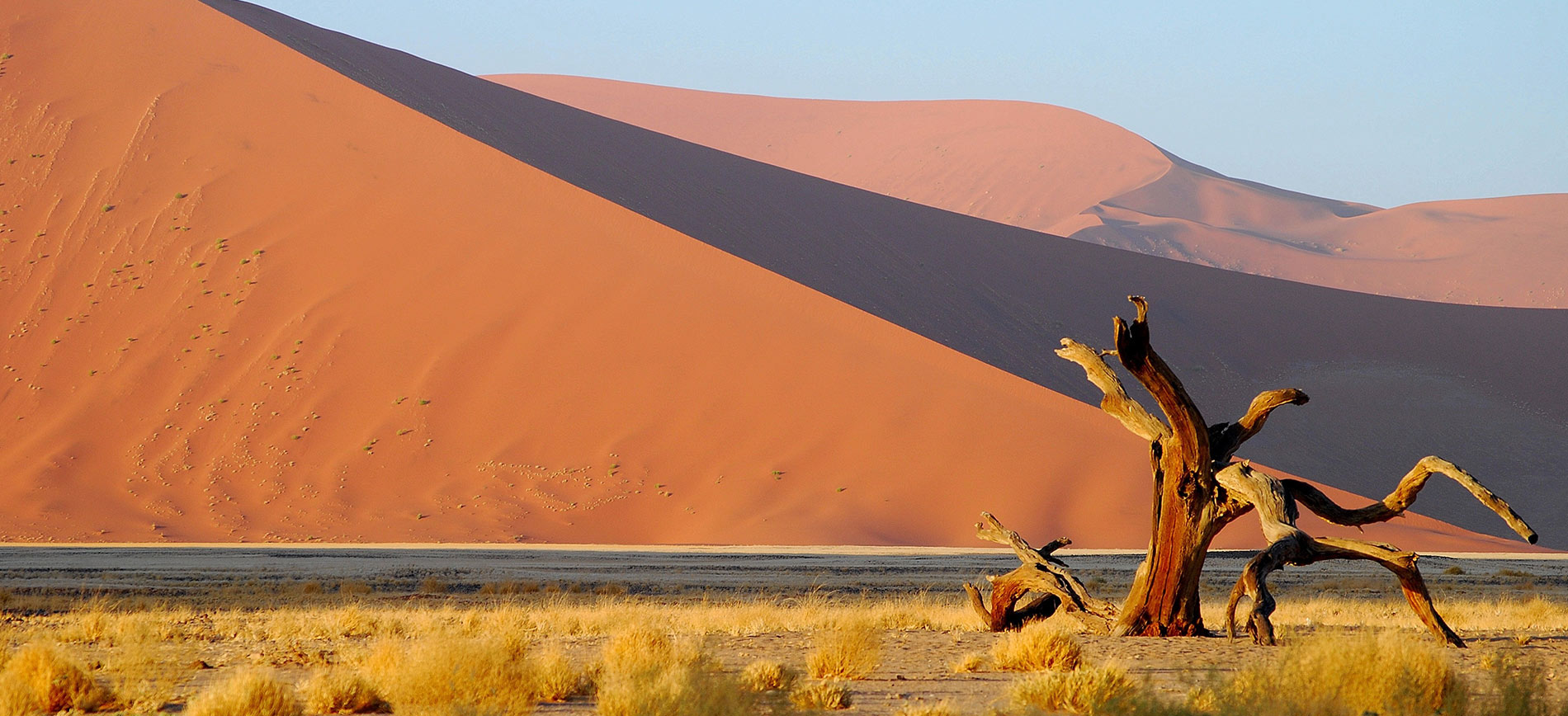 Wilderness Safaris Namibia Vacancies